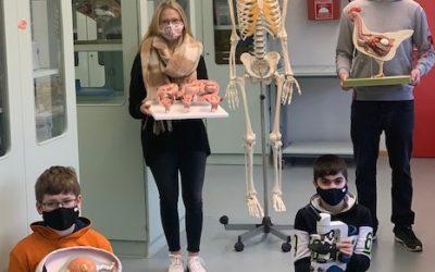 Gesamtschule der Geldern freut sich über neue naturwissenschaftliche Ausstattung
